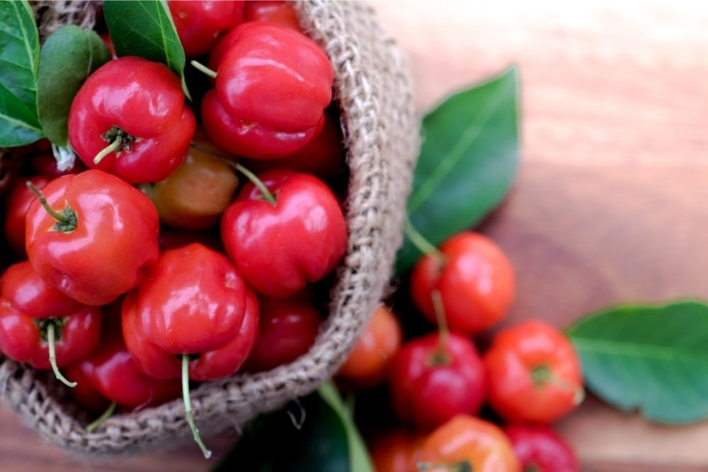 Acerola Benefits, Uses & History
