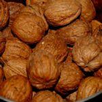 Black Walnut Benefits, Uses & History